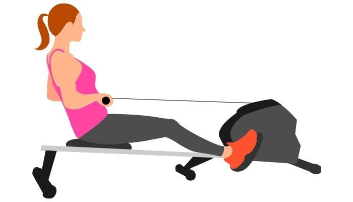 Rowing Machine For Exercise For Weight Loss
