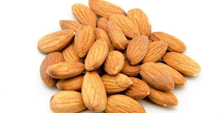 Are Almonds Good For You To Lose Weight