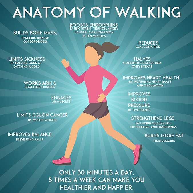 Infographic showing why walking is the best supplement for heart health